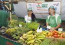 #Sergipe | 'Peste da China' causa quedas nas vendas, relatam produtores
