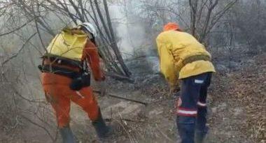 Focos de incêndio na Bahia voltam a aumentar; cidade da Barra é a mais atingida do país